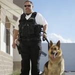 Mand med skudsikker vest og hund